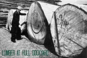 Hull Dockyard c 1930 a source of reclaimed parquet