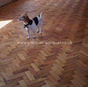 Pitch Pine floor