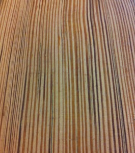 Pitch pine grain close-up